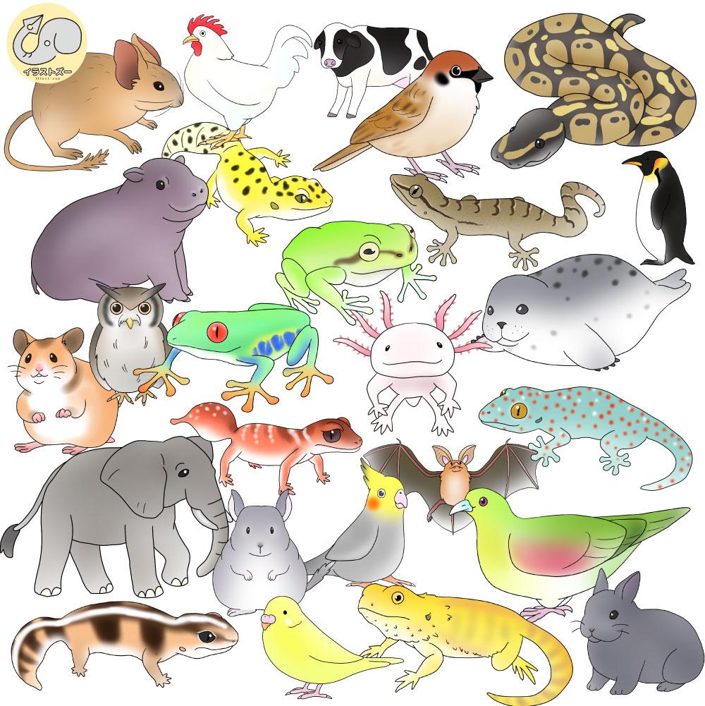 生物や爬虫類のかわいいキャラクターイラスト集