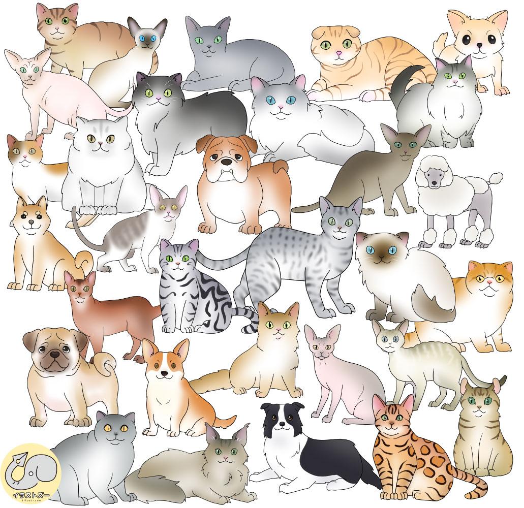 犬と猫のかわいいイラスト集